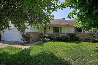 Wadsworth Single Family Home For Sale: 179 Stauffer Dr