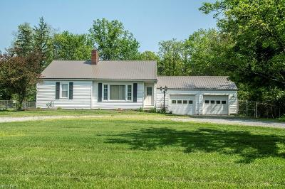 Canfield Single Family Home For Sale: 7490 Kirk Rd