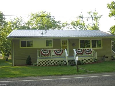 Single Family Home For Sale: 3020 State Route 376