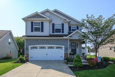 Painesville Township Condo/Townhouse For Sale: 1042 Spring Run Blvd
