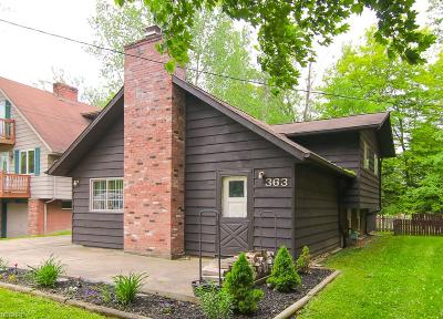 Chippewa Lake Single Family Home For Sale: 363 Craggy Creek Dr