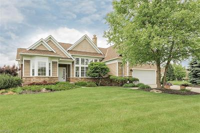 Solon Single Family Home For Sale: 37285 Wexford Dr