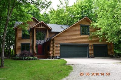 Twinsburg Single Family Home For Sale: 9736 Liberty Rd