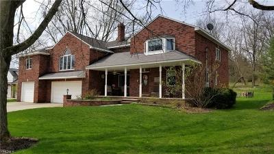 Brecksville Single Family Home For Sale: 8976 Elm St