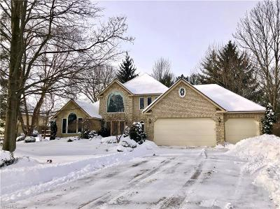 Strongsville Single Family Home For Sale: 14896 Britannia Ct