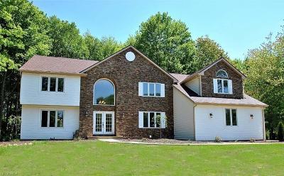 Solon Single Family Home For Sale: 6215 Arbor Glen Ct