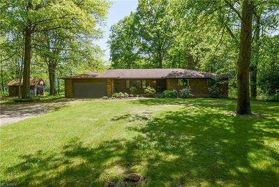 Avon Single Family Home For Sale: 3802 Stoney Ridge Rd