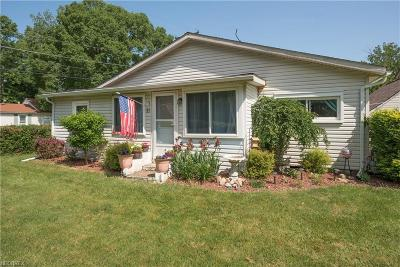 Painesville Single Family Home For Sale: 85 Kenilworth Ave