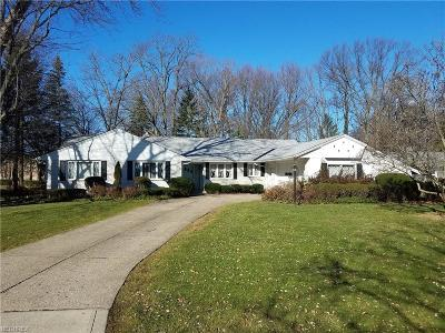 Fairview Park Single Family Home For Sale: 3918 North Valley Dr