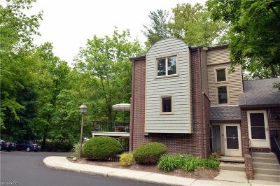 Brecksville Condo/Townhouse For Sale: 6825 West Fitzwater #E-57
