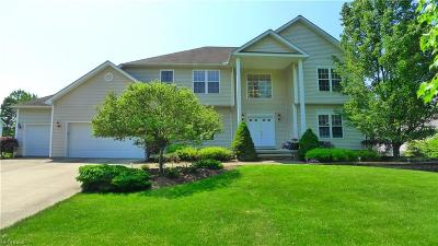 Solon Single Family Home For Sale: 29430 West Woodall Dr
