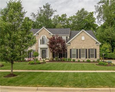 Copley Single Family Home For Sale: 158 Millstream Ct