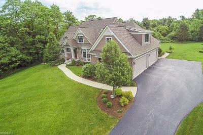 Chagrin Falls Single Family Home For Sale: 8315 Devon Ct