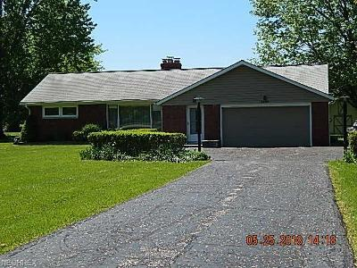 Willoughby Hills Single Family Home For Sale: 2690 River Rd