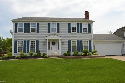 Strongsville Single Family Home For Sale: 17977 Spyglass Hill