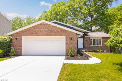 Seven Hills Single Family Home For Sale: 5870 North Crossview Rd