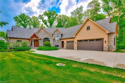 Chagrin Falls Single Family Home For Sale: 7230 Brighton Park Ct