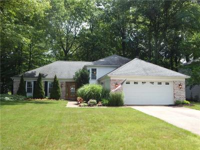 Westlake Single Family Home For Sale: 2985 Creekside Dr