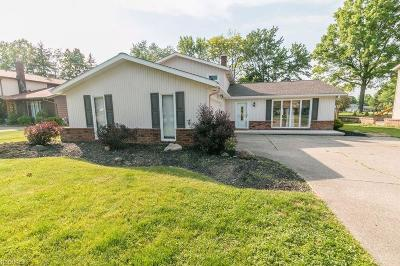 Brunswick Single Family Home For Sale: 3849 Skyview Dr