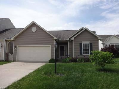 Aurora Single Family Home For Sale: 10546 Penny Ln