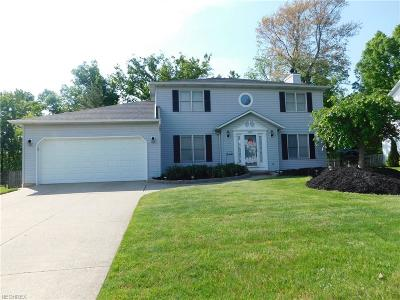 Twinsburg Single Family Home For Sale: 12067 Waywood Dr