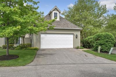 Bratenahl Single Family Home For Sale: 40 Haskell Dr
