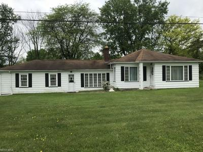 Canfield Single Family Home For Sale: 10057 Leffingwell Rd