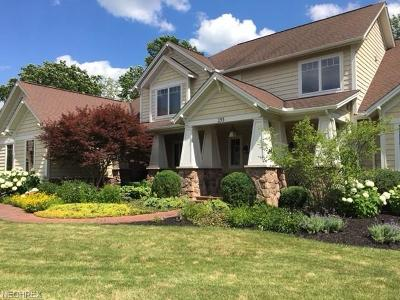 Aurora Single Family Home For Sale: 155 Lookout Pt