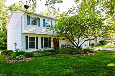 Painesville Township Single Family Home For Sale: 1640 Bridle Path