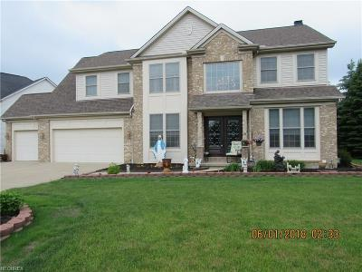 Strongsville Single Family Home For Sale: 15002 Old Oak Dr