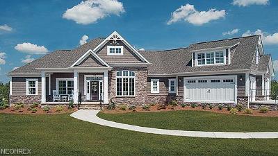 Salem Single Family Home For Sale: 10 Stone Castle Trl