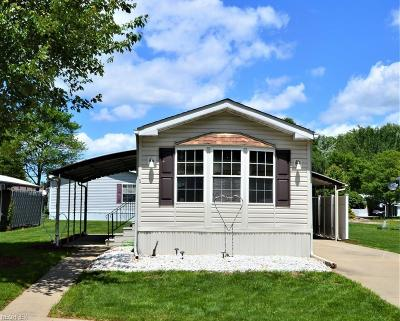 Olmsted Township Single Family Home For Sale: 5 Brightwood Ln