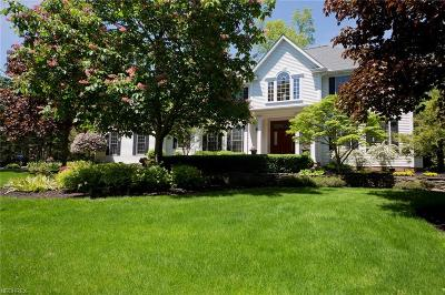 Geauga County Single Family Home For Sale: 206 Fox Ln