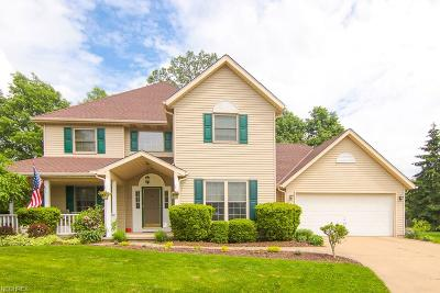 Strongsville Single Family Home For Sale: 9915 Chevy Chase