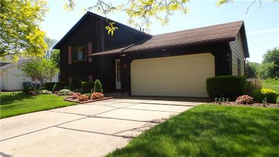 Painesville Township Single Family Home For Sale: 1436 Thatcher Dr