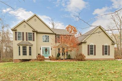 Chagrin Falls Single Family Home For Sale: 18930 Eastwood Dr