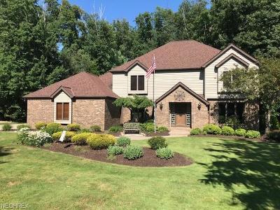 Brecksville Single Family Home For Sale: 4533 Glen Eagle Dr