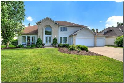 Solon Single Family Home For Sale: 6713 Ayleshire Dr