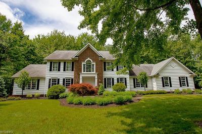 Kirtland Single Family Home For Sale: 9046 White Oak Rd
