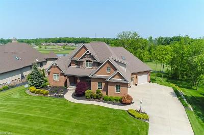 Canfield Single Family Home For Sale: 6787 Langston Run