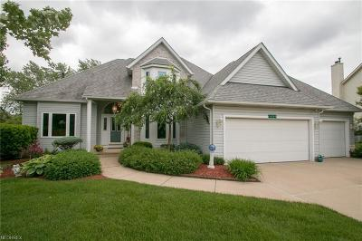 Strongsville Single Family Home For Sale: 16209 Pepperwood Ct