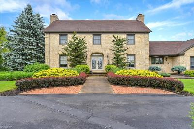 Canfield Single Family Home For Sale: 9175 Detwiler Rd