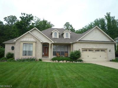 Lake County Single Family Home For Sale: 12355 Summerwood Dr