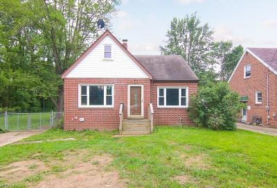 Olmsted Township Single Family Home For Sale: 27127 Cook Rd