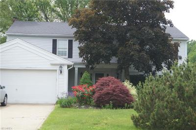 Hunting Meadows Single Family Home For Sale: 17001 Deer Path