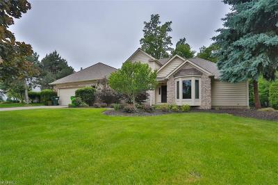 Highland Heights Single Family Home For Sale: 502 Longspur Rd