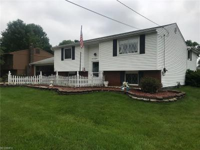 Youngstown Single Family Home For Sale: 1951 Birch Trace Dr