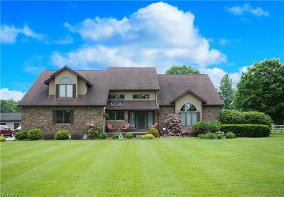 Canfield Single Family Home For Sale: 4449 West Middletown Rd