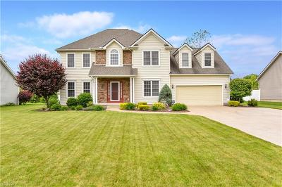 Canfield Single Family Home For Sale: 40 Mallard Xing