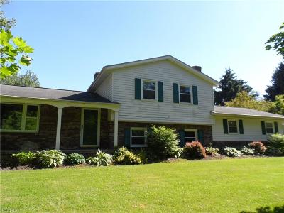 Medina County Single Family Home For Sale: 8145 Ballash Rd